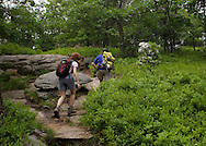 Bear Mountain, New York - A woman and a man hike up the Appalachian Trail at Bear Mountain on June 5, 2010.