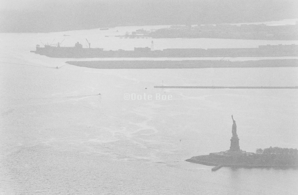Aerial view of Statue of Liberty.
