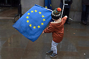 The day before Brexit Day, a young boy waves the EU flag, outside the Houses of Parliament in Parliament Square, Westminster, on 30th January 2020, in London, England, United Kingdom. The United Kingdom will leave the European Union formally at 23:00 GMT on 31st January, 2020.