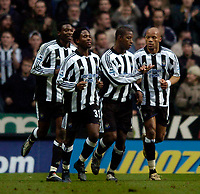 Fotball<br /> England 2004/22005<br /> Foto: SBI/Digitalsport<br /> NORWAY ONLY<br /> <br /> Newcastle United v Southampton<br /> Barclays Premiership, 15/01/2005.<br /> <br /> Newcastle's Titus Bramble (2nd R) is congratulated after scoring by Jean Alain Boumsong
