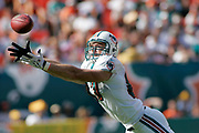 Miami Dolphins tight end Justin Peelle stretches out in an attempt to catch a pass during the Green Bay Packers 34-24 victory over the Dolphins on October 22, 2006 at Dolphin Stadium in Miami, Florida.