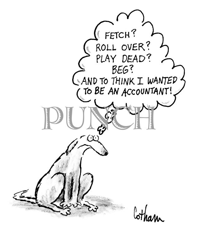 'Fetch? Roll over? Play dead? Beg? And to think I wanted to be an accountant!'