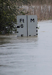 © London News Pictures. 29/04/2012. Ingatestone, UK. A river depth indicator at 5ft at a crossing on the river Wid near Ingateston in Essex on April 29, 2012 . The river Wid broke it's banks following torrential rainfall. Photo credit : Ben Cawthra /LNP