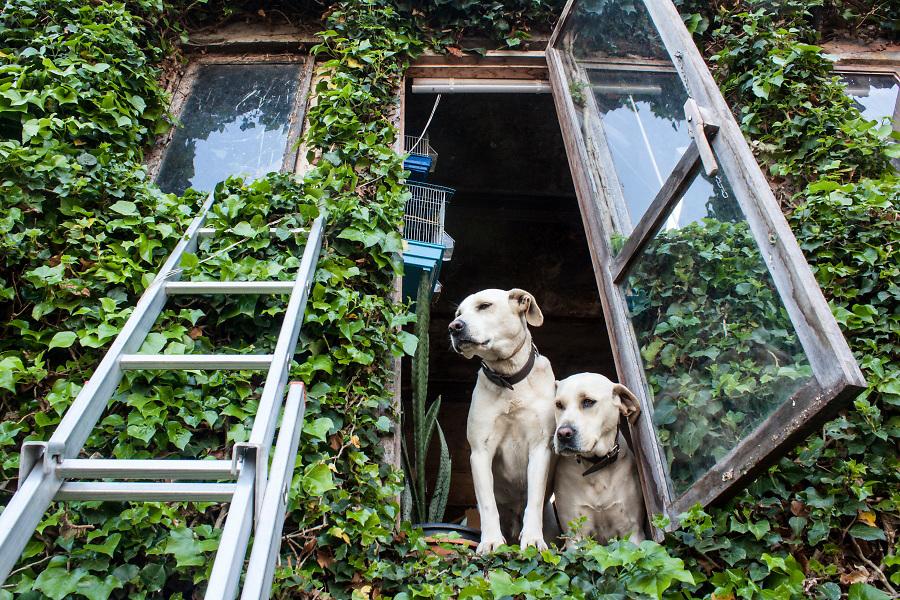 /ES/ Los vecinos viven en harmonía con la naturaleza.