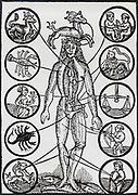 A blood-letting man or Little Leech, showing points of blood-letting connected with the signs of the Zodiac. Woodcut from a 17th century almanack.
