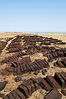 Rows of peat cuttings drying in the sun, HIghlands, Scotland.