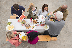 High angle view of family and friends enjoying outdoor party at farmhouse, Bavaria, Germany