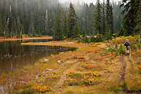 hiker in autumn huckleberry colors the shoreline along Junction Lake as clouds move through the Subalpine Fir forest in the Indian Heaven Wilderness - Gifford Pinchot National Forest, Washington state, USA