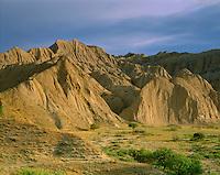 Georgia, Vashlovani National Park, Georgia, flowering semi-desert with Badlands, border area to Azerbaidjan
