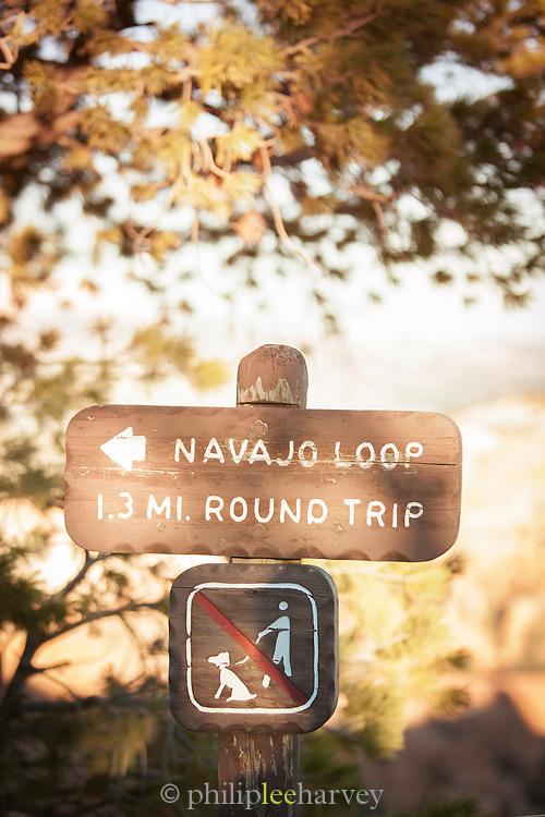 Navajo Loop walk, leading through Bryce Amphitheatre, Bryce Canyon National park, Utah, United States of America