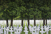 Graves with white crosses at World War One cemetery, Romagne-sous-Montfaucon, France