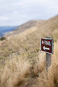 A sign on a hillside points the way to the 'M' Trail. Image has a very shallow depth of field. Missoula Photographer, Missoula Photographers, Montana Pictures, Montana Photos, Photos of Montana