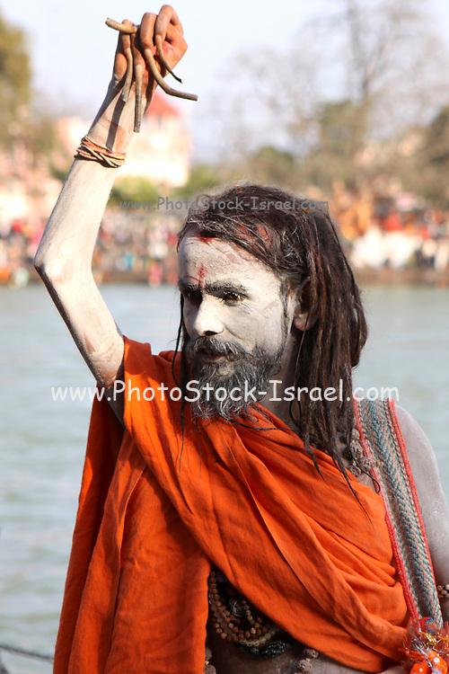 India, Uttarakhand, Haridwar, Kumbh Mela. A Sadhu an ascetic or practitioner of yoga (yogi) who has given up pursuit of the first three Hindu goals of life: kama (enjoyment), artha (practical objectives) and even dharma (duty).