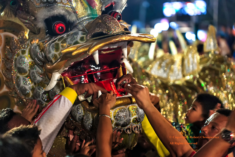 Chinese New Year is celebrated in the traditional way, with a dancing dragon, into which people place money for good luck, Ayutthaya Thailand.