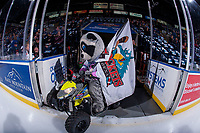 KELOWNA, CANADA - FEBRUARY 17: Kelowna Rockets' mascot Rocky Racoon rides his quad onto the ice holding the flag at the start of the game against the Edmonton Oil Kings  on February 17, 2018 at Prospera Place in Kelowna, British Columbia, Canada.  (Photo by Marissa Baecker/Shoot the Breeze)  *** Local Caption ***