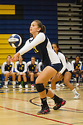 Milpitas senior Pilar Ferguson (11) bumps the ball over the net during a home game against Monta Vista High School on Sept. 10, 2012.  Milpitas would go on to lose in 4 sets, 7-25, 16-25, INSERT SCORE, 17-25.  Photo by Stan Olszewski/SOSKIphoto.