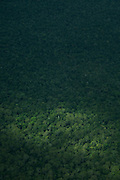 Ariel view of jungle near Lake Murray, Middle Fly District, Western Province, Papua New Guinea