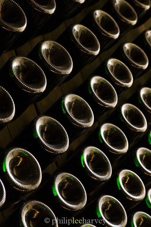 Close-up of wine bottles stored in cellar, France