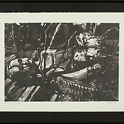 """Title: It Was the Synergy<br /> Artist: Marianne Sexton<br /> Date: 2005<br /> Medium: Lithograph and Chine-collé<br /> Dimensions: 22.5 x 17""""<br /> Instructor: Terri Goodhue<br /> Status: On Display<br /> Location: Art & Digital Media Office Suite<br /> Highland Campus HLC4 Bldg 4000, Room 2110"""