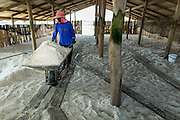 "28 MARCH 2014 - NA KHOK, SAMUT SAKHON, THAILAND:  Thai workers stack salt in a warehouse in Samut Sakhon province.Thai salt farmers south of Bangkok are experiencing a better than usual year this year because of the drought gripping Thailand. Some salt farmers say they could get an extra month of salt collection out of their fields because it has rained so little through the current dry season. Salt is normally collected from late February through May. Fields are flooded with sea water and salt is collected as the water evaporates. Last year, the salt season was shortened by more than a month because of unseasonable rains. The Thai government has warned farmers and consumers that 2014 may be a record dry year because an expected ""El Nino"" weather pattern will block rain in mainland Southeast Asia. Salt has traditionally been harvested in tidal basins along the coast southwest of Bangkok but industrial development in the area has reduced the amount of land available for commercial salt production and now salt is mainly harvested in a small parts of Samut Songkhram and Samut Sakhon provinces.   PHOTO BY JACK KURTZ"