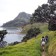 Walkers on the Coromandel Coastal Walkway with Discovery Tours. The walk from Fletcher Bay takes a comfortable 3 to 4 hour traversing farmland, coastline and pristine native bush and finishing in Stony Bay.  Coromandel, New Zealand. 30th November 2010. Photo Tim Clayton..