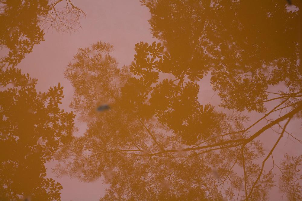 Carmesia_MG, Brasil...Detalhe de uma poca de agua numa estrada de terra em Carmesia, Minas Gerais...A puddle on the dirty road in Carmesia, Minas Gerais...Foto: LEO DRUMOND /  NITRO