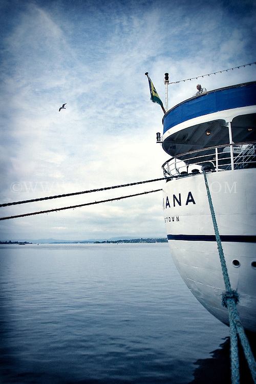 A man stands on the back of a ship watching a seagull flying across the blue sea in Oslo, Norway