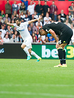 Football — 2016 / 2017 Premier League - Swansea vs Chelsea<br /> <br /> John Terry captain of Chelsea falls to his knees at the end of the drawn game as Swansea players celebrate in the background at the Liberty Stadium.<br /> <br /> pic colorsport/winston bynorth