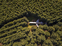 OREGON / USA - 3 April 2017 : Aerial view of Airplane home in the woods in Oregon, USA.