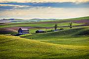 Image of a red barn and wheatfield near St John, Palouse, eastern Washington, Pacific Northwest, property released by Randy Wells