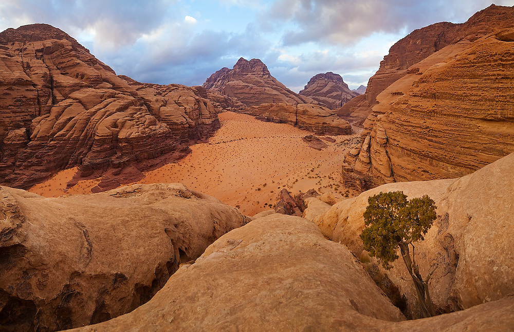 High angle view of Burrah Canyon weaving through high sandstone mountains in Wadi Rum, Jordan.