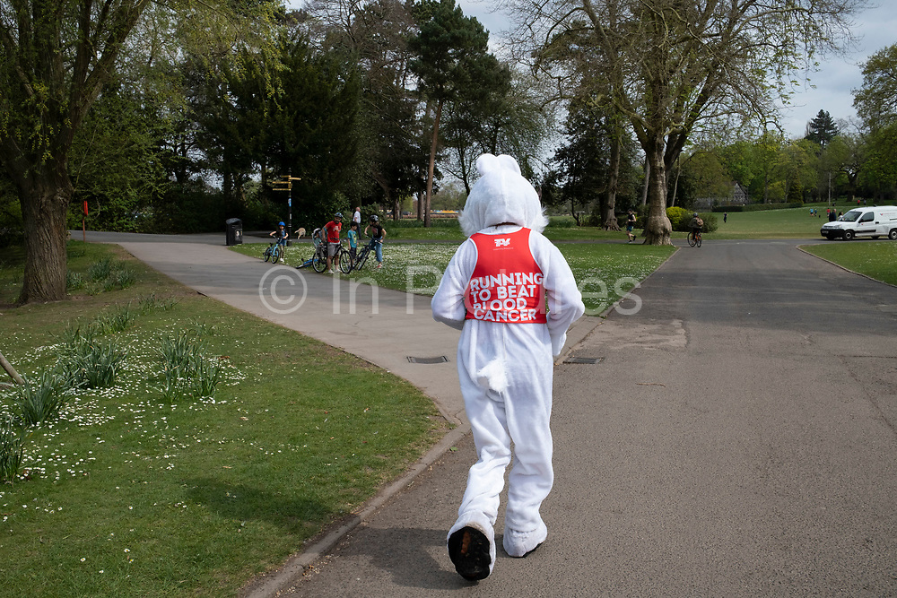 Runner dressed up as the Easter Bunny out exercising responsibly and applying social distancing in Canon Hill Park as Coronavirus is felt on a local level on 12th April 2020 in Birmingham, England, United Kingdom. People here, in what is normally an incredibly busy urban park are mainly abiding the stay at home message, and those out exercising are doing so with care. Coronavirus or Covid-19 is a new respiratory illness that has not previously been seen in humans. While much or Europe has been placed into lockdown, the UK government has announced more stringent rules as part of their long term strategy, and in particular social distancing.