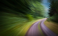 Details are rendered as motion blurs along a curve on a forest road.