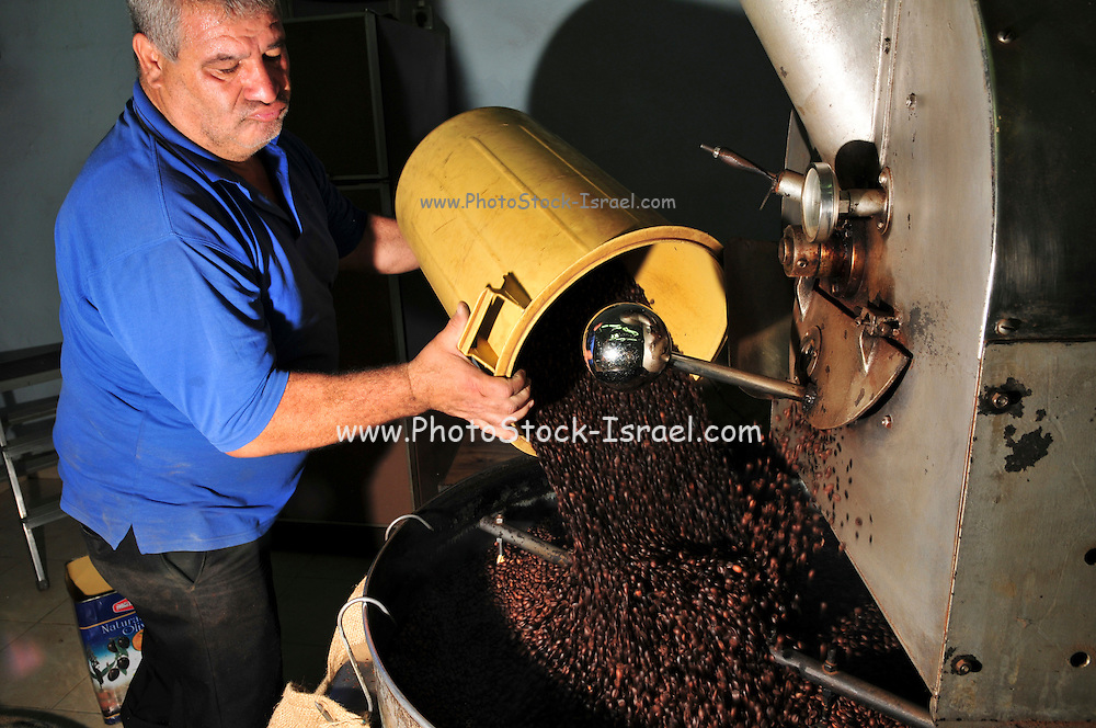 Israel, Nazareth, small coffee roasting shop  Beans being roasted in a roaster Worker adds beans to to machine