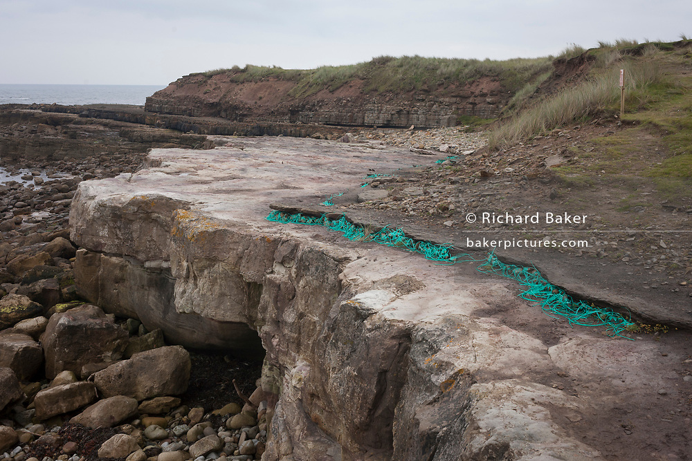 An art instillation entitled Technofossil by the artist Helen Paling blends with the coastal landscape of Coves Haven on Holy Island, on 27th September 2017, on Lindisfarne Island, Northumberland, England. Consisting of baler twine and pebbles, the art comments on the problem of accumulated coastal waste. The Holy Island of Lindisfarne, also known simply as Holy Island, is an island off the northeast coast of England. Holy Island has a recorded history from the 6th century AD; it was an important centre of Celtic and Anglo-saxon Christianity. After the Viking invasions and the Norman conquest of England, a priory was reestablished.