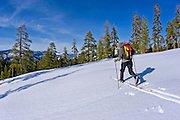 Backcountry skier traversing a ridge below Sentinel Dome, Yosemite National Park, California