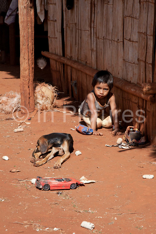 Young Guarani boy playing with toys oin the ground with a dog next to him. The Guarani are one of the most populous indigenous populations in Brazil, but with the least amount of land. They mostly live in the State of Mato Grosso do Sul and Mato Grosso. Their tradtional way of life and ancestral land is increasingly at risk from large scale agribusiness and agriculture. There have been recorded cases and allegations of violence between owners of large farms and the Guarani communities in this region.