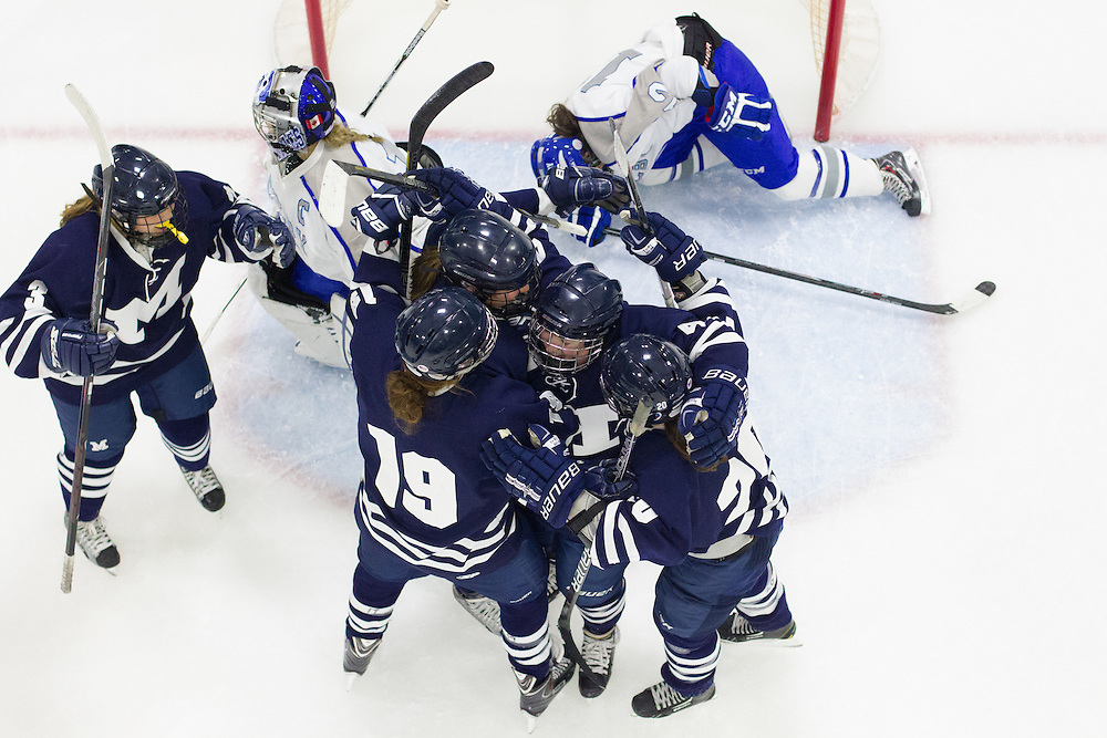 Middlebury College celebrates their third period goal in a NCAA Division III hockey game against Colby College on November 16, 2013 in Waterville, ME. (Dustin Satloff/Colby College Athletics)