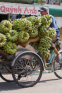 A vietnamese man carries a huge load of bananas on his tricycle in a street of Ho Chi Minh city (HCMC), Vietnam, Asia