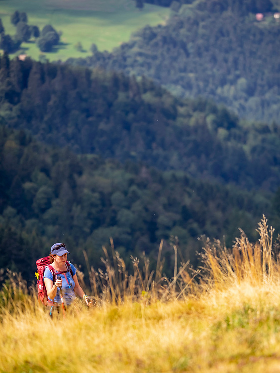 Women hiking over meadow landscape at Petit Ballon, Vosges, France