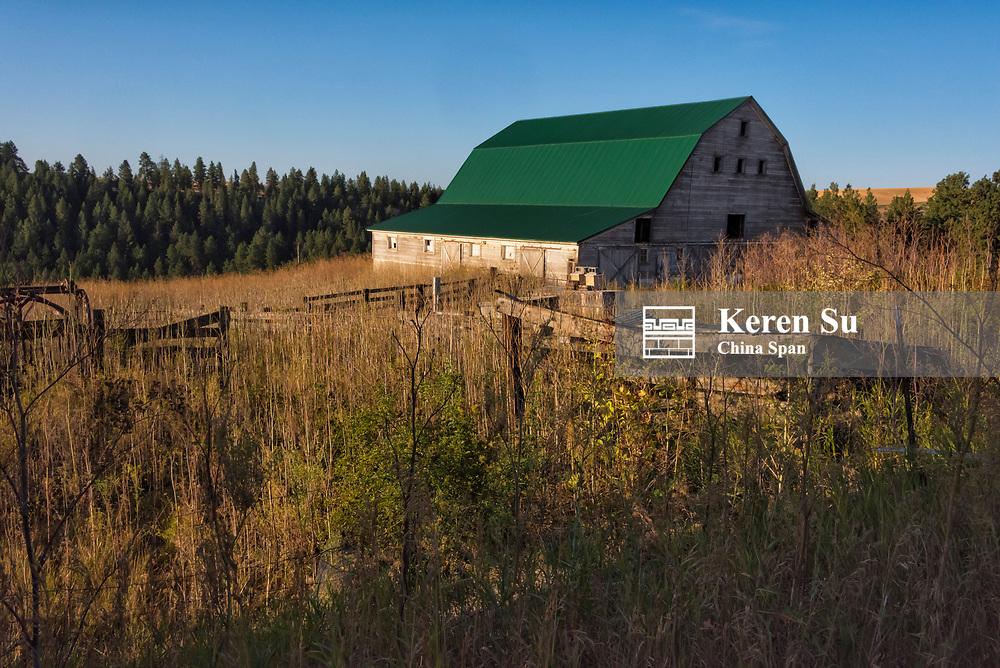 Morning view of farm and farm house, Palouse, Washington State, USA