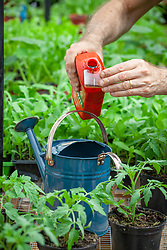 Mixing Tomorite liquid tomato feed in a watering can