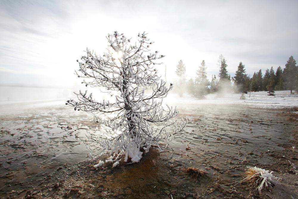West Thumb of Yellowstone Lake. Yellowstone National Park, WY.