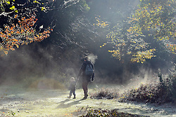 © Licensed to London News Pictures. 13/11/2013. Burnham, UK. A man and a young boy walk through the early mooring mist as it is burnt off by the sunshine. Autumn sunshine through the trees at Burnham Beeches, South Buckinghamshire on WEDNESDAY 13TH NOVEMBER. The beeches covering 220 hectares is primarily noted for its ancient beech and oak pollards. Photo credit : Stephen Simpson/LNP
