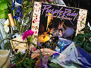 "22 APRIL 2016 - MINNEAPOLIS, MN: A copy of Prince's landmark LP ""Purple Rain"" left at 1st Ave in Minneapolis. Thousands of people came to 1st Ave in Minneapolis Friday to mourn the death of Prince, whose full name is Prince Rogers Nelson. 1st Ave is the nightclub the musical icon made famous in his semi autobiographical movie ""Purple Rain."" Prince, 57 years old, died Thursday, April 21, 2016, at Paisley Park, his home, office and recording complex in Chanhassen, MN.    PHOTO BY JACK KURTZ"