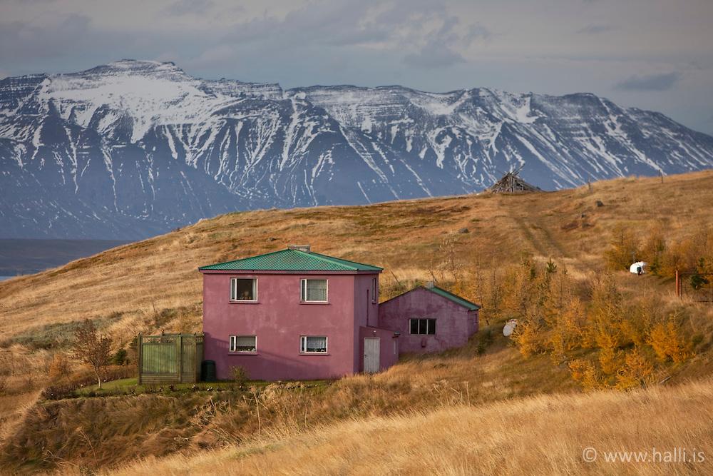 Purple house near Grenivik, north Iceland - Fjólublátt hús við Grenivík