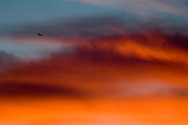 Jet plane flying through clouds at sunset