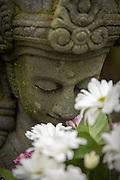 Buddha Statue, Yogyakarta, South Central Java, Java, Indonesia, Southeast Asia