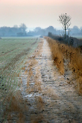 01 December 2016. Favières, France.<br /> Cold and frosty morning.<br /> Photo; Charlie Varley/varleypix.com
