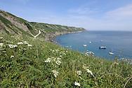 Landing Bay and east Side, Lundy, Devon